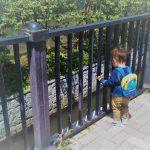 抱っこばかりで歩かない子供が歩いた!歩く楽しさを教える6つのこと
