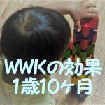 ワールドワイドキッズの効果②(stage1~3、息子1歳10ヶ月時点)