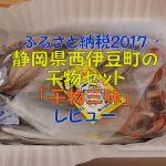 【ふるさと納税2017】静岡県西伊豆町の干物セットは大サイズ!